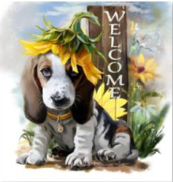 Diamond Painting 40x40 welcome dog rond